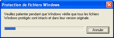 protection-fichiers-windows